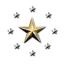 Misfits Alliance