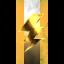 Golden Gunz