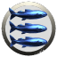 Blue Fish on a Plate Operations