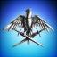 Phoenixx Knights