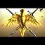 Nomad Privite Defence Force
