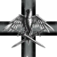 Seraphim Special Forces
