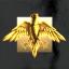 Golden Eagle Enterprises
