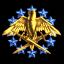 34.Caldarian Light Shielded Squadron