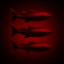 Last Salmon Men