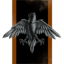 Grey Hawk Corporation
