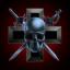 skulls and crosshairs