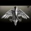Raven Guards
