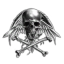 Ariks Corporation