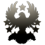 Dark Wings Holding Corp
