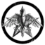Limited Skyfleet Corporation