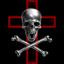 Assassins Inc.