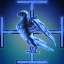 Anti-Falcon Coalition