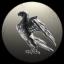 The Void Hawks