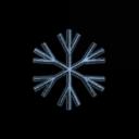 Special Snowflake Society