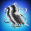 Corvus Network