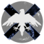 Snow Raven Expeditionary Corps