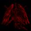 The Seraphim Raiders
