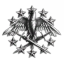Imperial Russian Space Navy