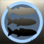 sharkCorp