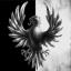 Requiem for a DiR. Zarya division.
