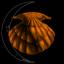 Ghost Moon Seashell