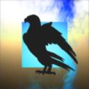 Black Wings Union