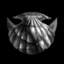 Shell Mayaki Shell Corp
