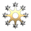 Star 8