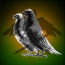 Nobel Birds Corporation