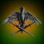 Voltoi Merchant Marines