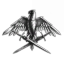 Queens Legion Combat Corp
