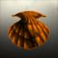 Trinity Sea Shells