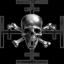 Caldari Special Warfare Flotilla