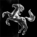 Pegasus Holding