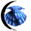 Solitary Shell