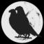 Big Black Crows