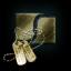 Serpentis Gold Tag