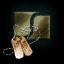 Shadow Serpentis Copper Tag