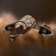Asmodeus Drone