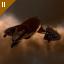 Heavy Armor Maintenance Bot II